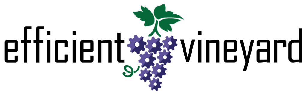 Saucer Efficient Vineyard Logo Design