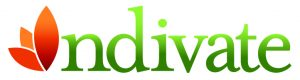 Saucer Indivate Logo