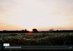 Saucer Videography